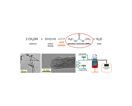 Conversion of Carbon Dioxide into Organic Carbonates for Polymer Synthesis