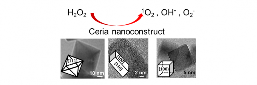 Reactive Oxygen Species Generation Catalyzed by Defective Cerium Oxide