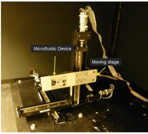 Construction of Scanning NIR Fluorescence Microscope_stage (1)