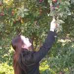 Dr. Lai and Jennifer picking apples at the Arbor Day Farm in Nebraska City.